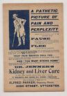 Vintage Original Dr  Jenner s Kidney Liver Cure Advertising Sign  Quack Medical