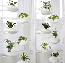 Pot Plant Food