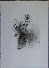 GIUSEPPE AJMONE litografia Vaso di Fiori 54x40 firmata numerata La Spirale 11/75