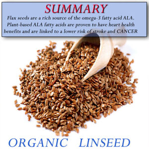 ORGANIC Linseed Gold Flax seeds PREMIUM SEEDS Golden Brown FREE FAST SHIPPING !!