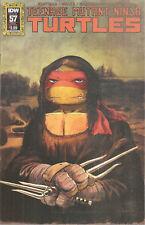 TMNT Teenage Mutant Ninja Turtles #57 ONGOING IDW COVER B MONA