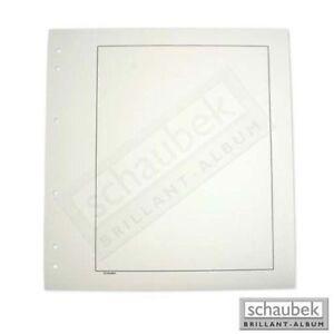 Schaubek BB510 Blankoblatt gelblich-weiß mit Rahmen - Albumkarton