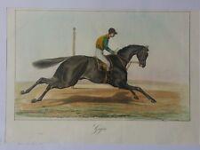 Giges - Chevaux de course haras  gravure 1837 hand coloured