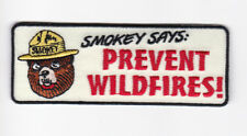 New rare Smokey the bear unique vintage design, firefighter Prevent Wildfires