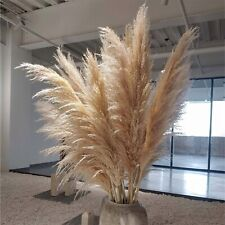 Hot 6pcs Wedding Flowers Pampas Grass Large Size Fluffy For Home Christmas Decor