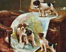 World Domination by John Hayes - Art Dogs Puppies Play Map Desk  8x10 Print 0726