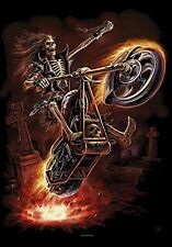 ANNE STOKES - HELLRIDER - FABRIC POSTER - 30x40 WALL HANGING - FANTASY HFL1168