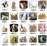abat-jour idéal correspond à lapins Papier peint couettes & coussins