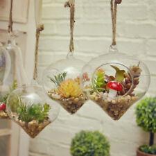 9*12cm Glass Hanging Flower Planter Hydroponic Vase Fishbowl Garden Home Decor