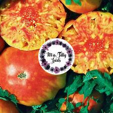 ‼️NEU‼️ HILLBILLY Tomatensamen 10 Samen HISTORISCHE Tomate lecker USA marmoriert