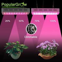 300W  Full Spectrum Dimmable daisy chain LED PflanzeLampe für Pflanze Blooming