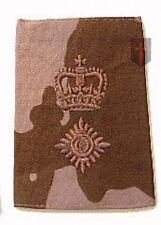 Lieutenant Colonel Desert DPM Rank Slide (New Official