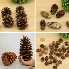 Natural Dried Flowers Pine Cones Ornament Christmas Tree Decor Party Supplies