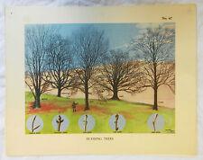 Vintage Schools Poster - 1930s - 1940s - Original - Budding Trees
