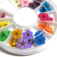 WR_ 36PCS 3D DECORATION REAL DRIED FLOWER FOR UV GEL ACRYLIC NAIL DIY ART TIPS F