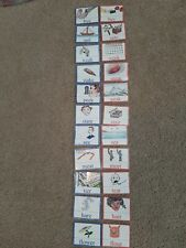 Montessori Homeschool Homophones Match Card Language Arts Word Study Material