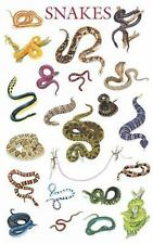 * NEW - SNAKE BREEDS POSTER by Dover Pblications SNAKES