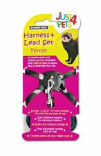 Ancol Ferret Collars, Leads & Harnesses