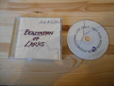 CD Pop Dot Allison - Exaltation Of Larks (10 Song) Promo COOKING VINYL