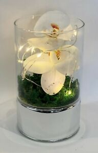 Glass Vase LED String Light Artificial White Orchid Flowers Home Decor And Gift