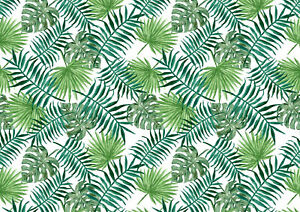 A4 Tropical Palm Leaf Icing Sheet / Wafer Paper | Edible Print | Cake wrap