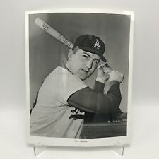 "TOM HALLER - Los Angeles Dodgers Baseball - 8"" x 10"" Black & White Photograph"