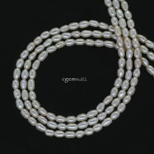 """High Luster Freshwater Pearl Tiny Rice Oval Seed Beads ap.2mm 15.5"""" #66297"""