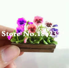 Unique Japanese Petal Mini Pansy Bonsai Plants Flowers Garden New 100 Pcs Seeds