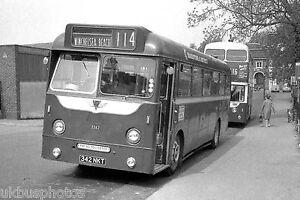 Maidstone 3342 Rye Bus Photo
