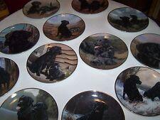 "12 Limited Edition Franklin Mint Black Labrador 8"" Plates"