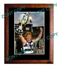 CAMERON LING GEELONG CATS FC 2011 PREMIERS A3 PHOTO 3
