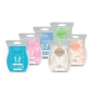 SCENTSY BARS- ALL FALL/BBMB 2020/Disney & MORE FREE SHIP Discount w/multiple