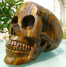 157mm  Tiger-Eye crystal Carved Skeleton, Healing SKUll 2300g