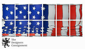 12 Panel 3D Wall Mural Paper Environmental Graphics C17 1969 American Flag 21'