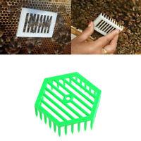 1Pc Plastic Green Queen Marker Cage Clip Bee Catcher Beekeeping Tool/
