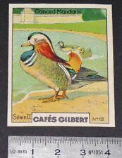 CHROMO 1936 CAFES GILBERT OISEAUX OISEAU CANARD MANDARIN