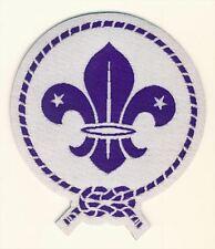 World Scout Emblem Glow in the Dark Fun Badge