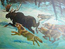 ART CANVAS PRINT THE WILD DOGS by CLARENCE TILLENIUS MANITOBA CANADA + 2 BONUS