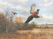 Autumn Trio By Maynard Reece phesant birds Framed Art Work