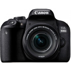 """Canon eos 800d body only 24.2mp 3"""" dslr Agsbeagle <br/> one year shop warranty"""