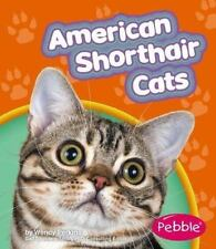 American Shorthair Cats-ExLibrary