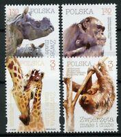 Poland 2018 MNH Wild Animals Giraffes Rhinos Chimpanzees Sloths 4v Set Stamps