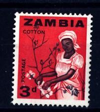 ZAMBIA - 1964 - Donna raccoglie il cotone