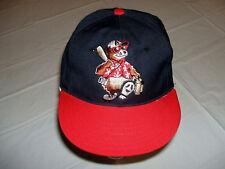 Ashville Tourists Minor League Baseball Hat YOUTH Adjustable Ted E. Bear Mascot