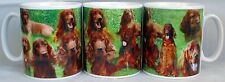 Red Setter Mug Ceramic Collage Scenes Irish Setter Mug Cup Hand Decorated UK