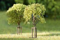 Junge Bäume 70950 von Auhagen