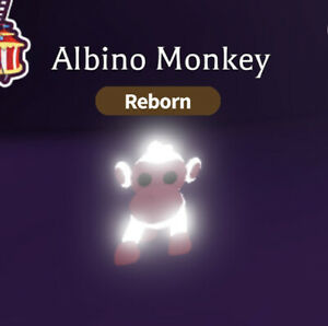 Roblox Adopt Me NFR Neon Fly Ride Albino Monkey