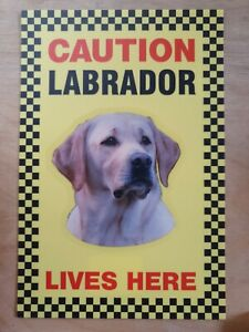 CAUTION Labrador Lives Here sign Dog security sign Yellow Labradors Yellow Lab