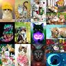 Full Drill Cat World DIY 5D Diamond Painting Cross Stitch Embroidery Decor Gift