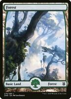 Magic the Gathering (mtg): ZNR: Zendikar Rising Full Art Land set x4